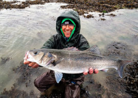 Any of you here going to be doing more estuary fishing for bass this year? — Henry Gilbey